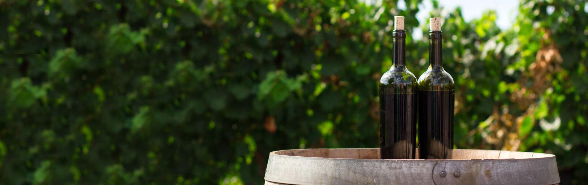 ワインの産地ごとの特徴